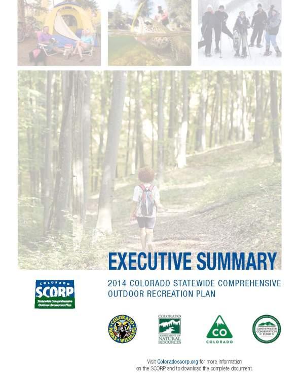 SCORP Exec Summary 1-31-14_Page_05