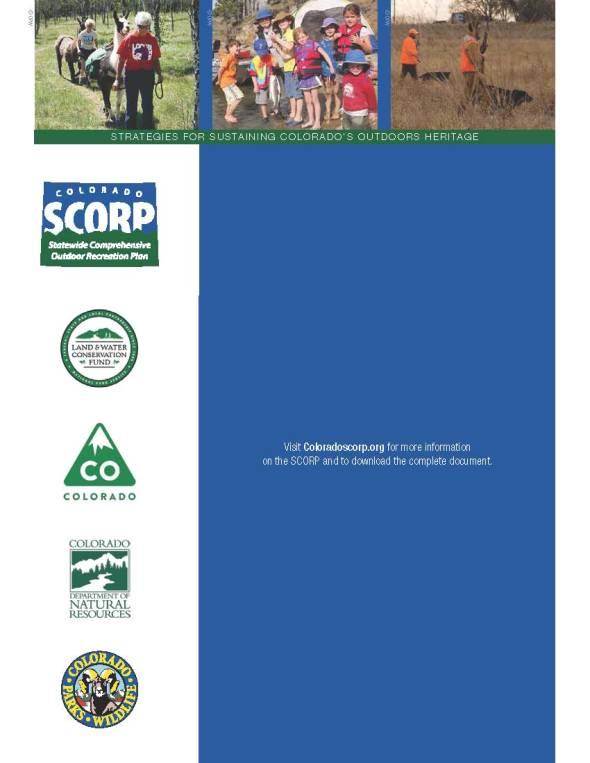 SCORP Exec Summary 1-31-14_Page_28